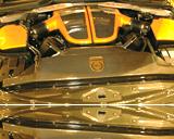 Химчистка двигателя